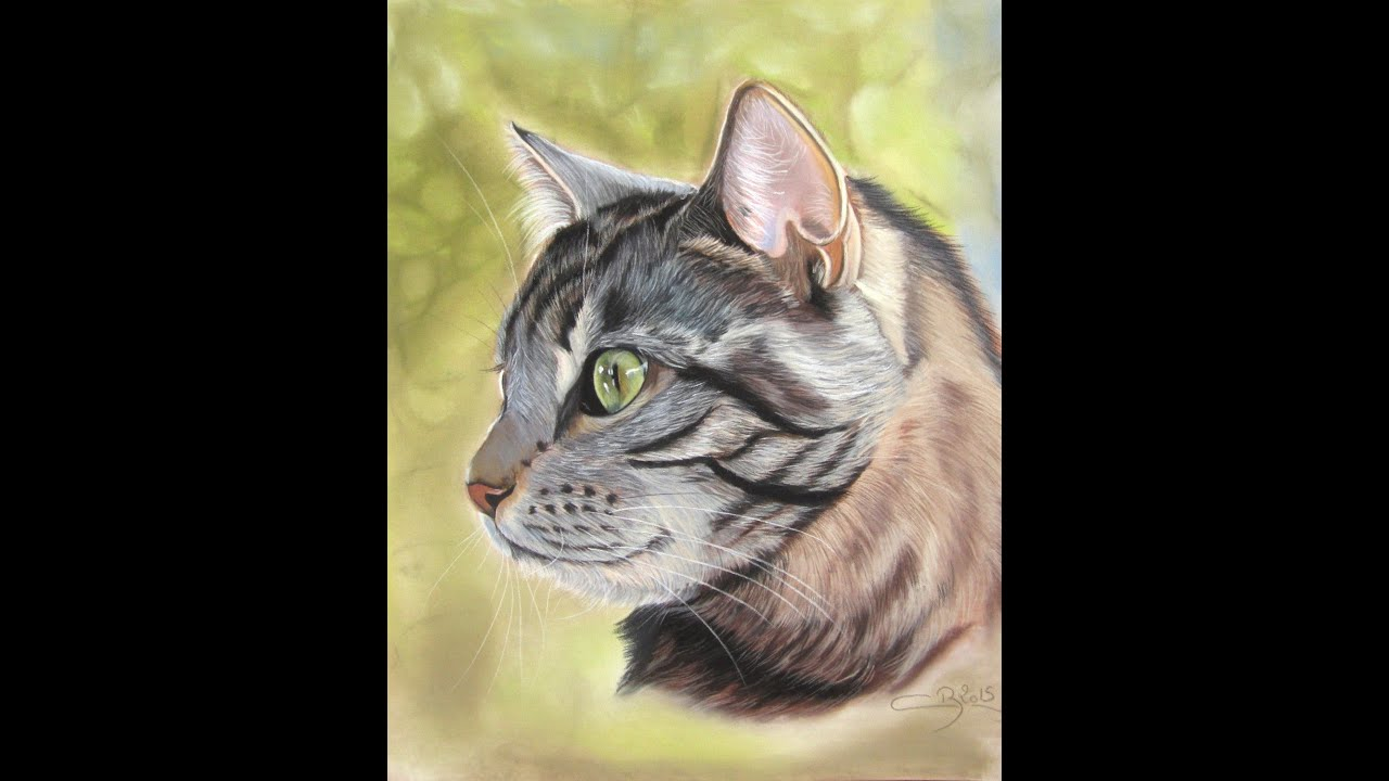 Pastels secs dessin de chat speed drawing youtube - Modele dessin cheval ...