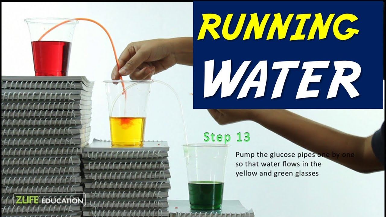 Walking water - Running - Easy Science Experiments for Kids - YouTube