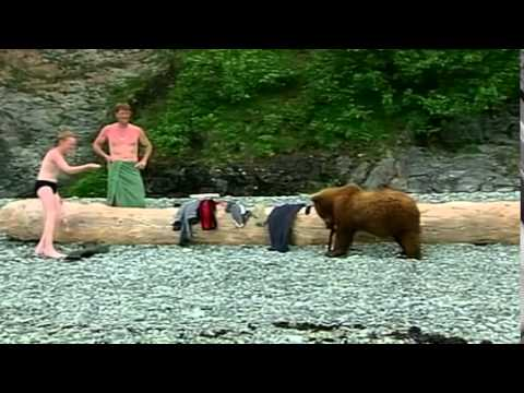 Animals Planet +  A Life With Bears