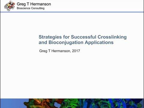 Strategies For Successful Crosslinking And Bioconjugation Applications