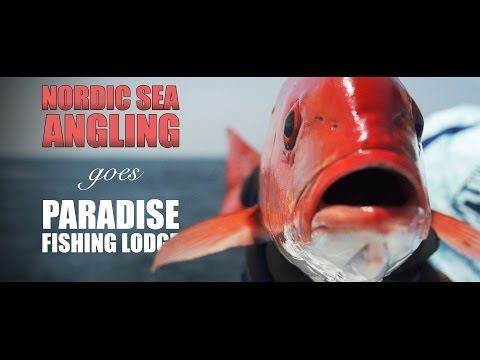 Nordic Sea Angling Goes Paradise Fishing Lodge @ Panama