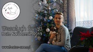 Wesołych Świąt! Boże Narodzenie 2019