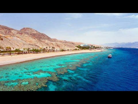 Эйлат. Израиль. Красное море/ Eilat. Israel. Read Sea