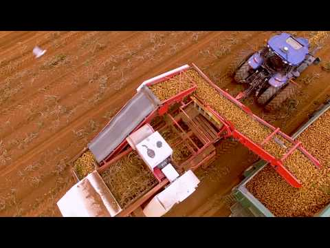 Allan Equipment 2 Row Potato Harvester