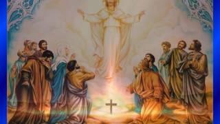 Kap za dobar dan, 25. 4. Sv. Marko, evanđelist (Mk 16,15-20)