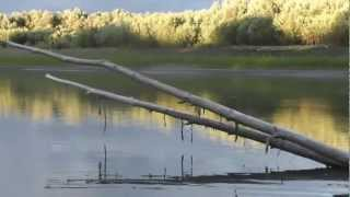 Рыбалка на ОБИ, д.Федоровка МИХА И САНЯ 2012Г..mp4