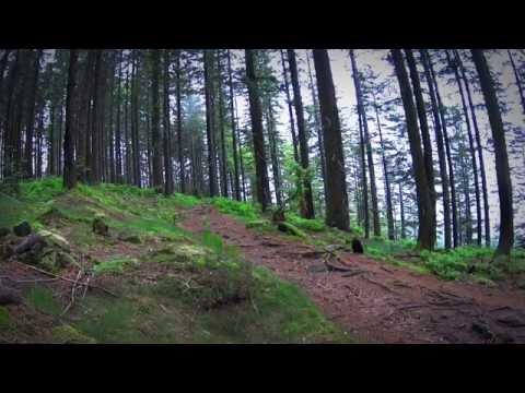 Westweg - An Adventure In The Black Forest, Westweg  Schwarzwald.