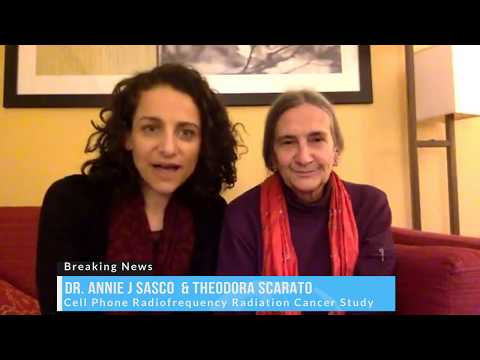 US NTP Study Cell Phone Radiation Causes Cancers in Rats Dr. Annie Sasco,Theodora Scarato