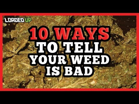 10 Ways To Tell Your Weed Is Bad Quality