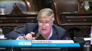 Oscar Aguad sesion ley de abastecimiento