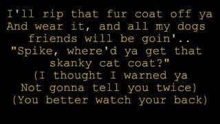 Big Bad Cat lyrics - Rugrats Go Wild