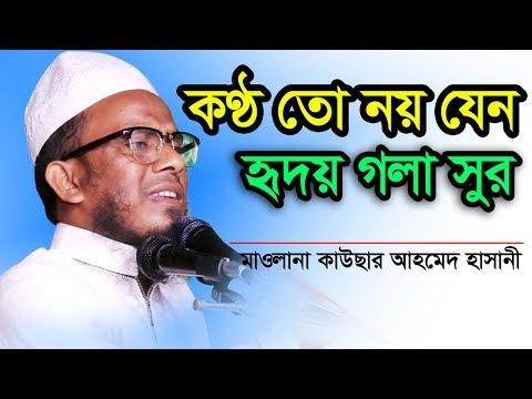 কন্ঠ তো নয় যেন হৃদয়ের সুর Maulana Kawsar Ahmad Hasani