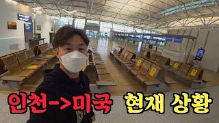 또 한국을 떠납니다 (미국행 비행기엔 사람이 얼마나 있…