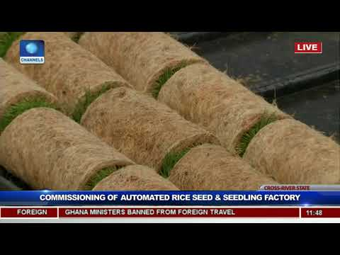 President Buhari Commissions Rice Seedling Factory In Calabar Pt.6