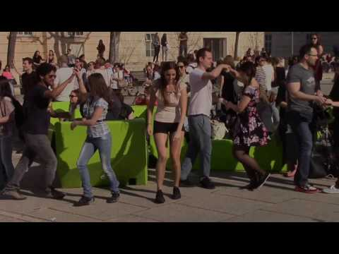 International Rueda de Casino - Flash Mob Day 2017/ Vienna