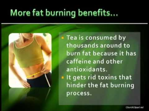 How to lose belly fat fast with diet image 20