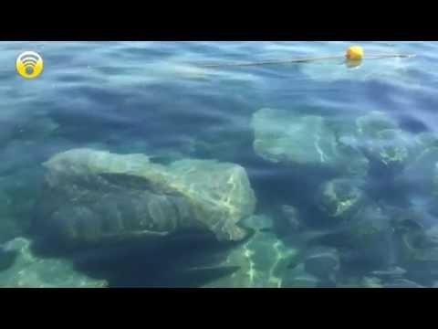 Loano, tutti al mare, o meglio dire quasi tutti...: video #1