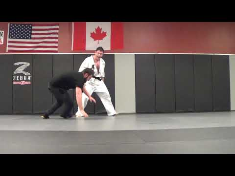 TMA Kung Fu Aikido Grappling Highlights & Judo Throws HAVE FUN w Your Grappling!