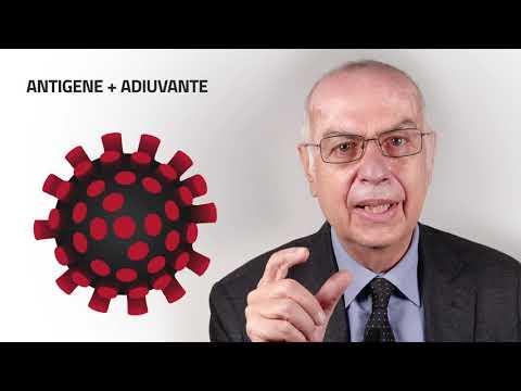 Come sono stati realizzati i vaccini anti Covid-19?