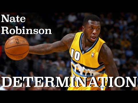 Nate Robinson Celtics 2014
