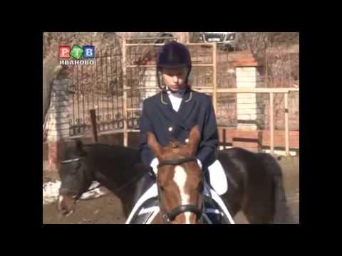 Конный спорт в Иваново