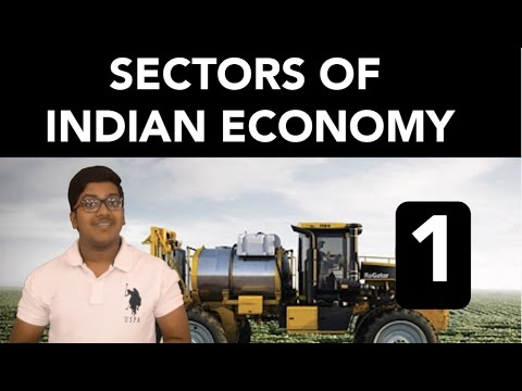 Economics: Sectors of Indian Economy (Part 1)