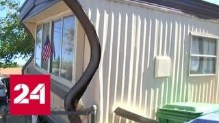 Смотреть видео В Калифорнии произошло мощное землетрясение - Россия 24 онлайн