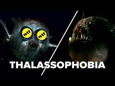 Do You Have Thalassophobia?