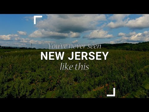 Melick's Town Farm: You've Never Seen New Jersey Like This
