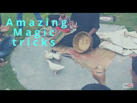 magic tricks most liked video ||by technical mamdul