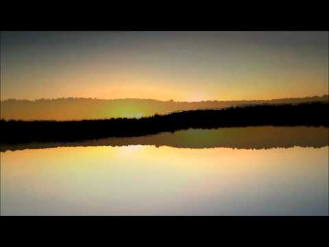 Max Cooper Live - Reflections/Contortions* / Nokia N8