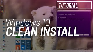 Windows 10 May 2019 Update, version 1903: Clean install process