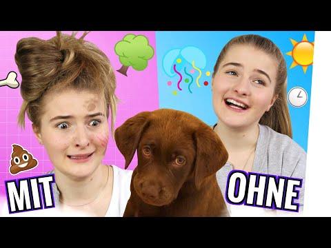 Das Leben MIT und OHNE Hund