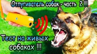видео Отпугиватель собак