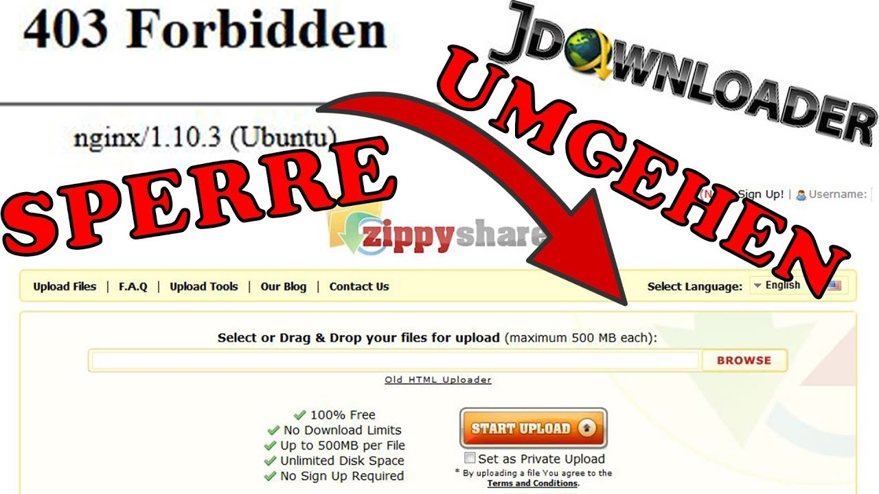 Zippyshare cancel blocking - 403 Forbidden - Browser - JDownloader