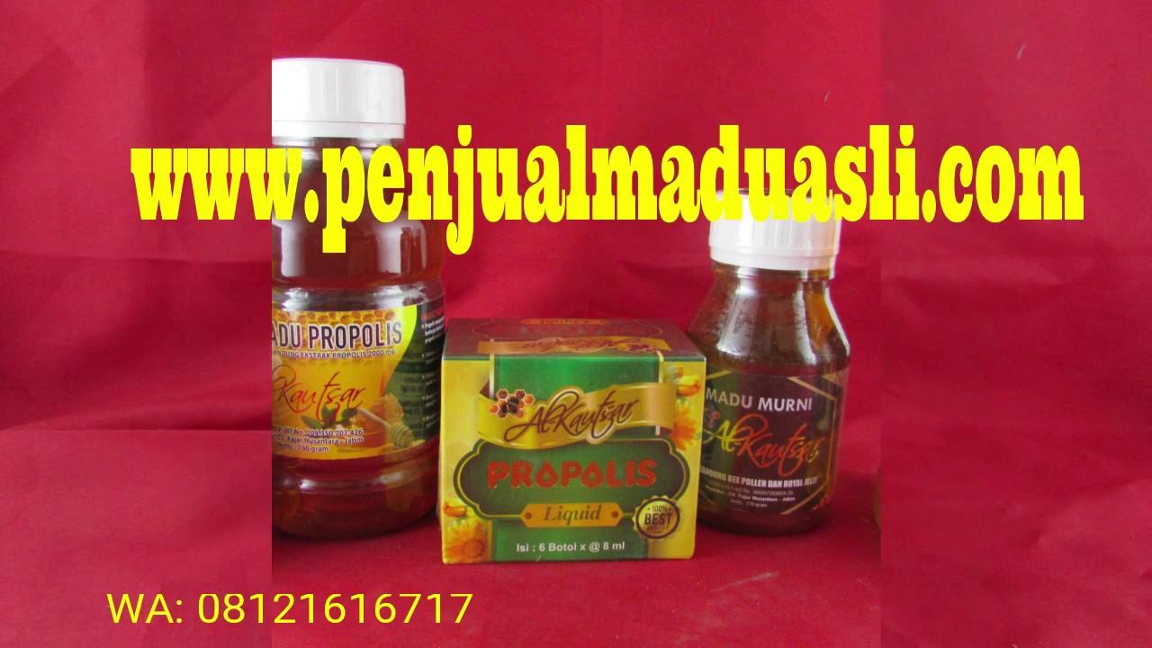 Jual Madu Hitam Pahit Lebah Alami Hubungi Wa 08121616717 Youtube Propolis Ratu