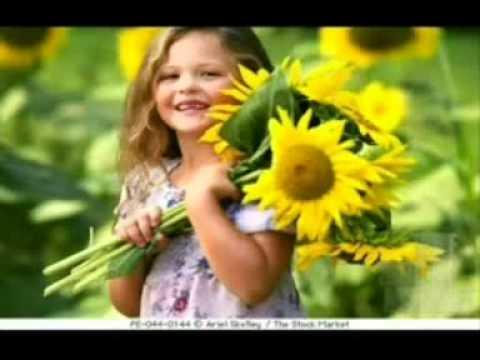 puvvukintha parimalama  telugu christian video song naveen babu