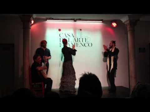 Casa del Arte Flamenco Cordoba