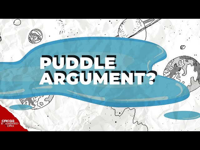 Does the puddle argument hold water?