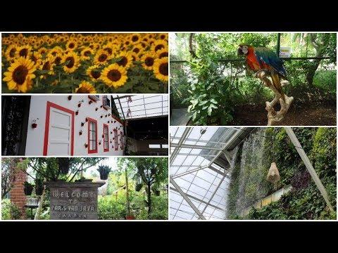 sky-garden-paris-van-java-(pvj)-,-nggak-berasa-lagi-di-atas-mall