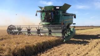 John Deere S690i Harvest Rice In Greece