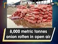 8,000 metric tonnes onion rotten in open air - Madhya Pradesh News