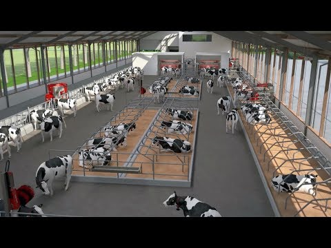 Lely Bright Farming Solutions