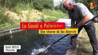 Lo Ganèl - Noël Vazelle éleveur de truites fario à Polminhac