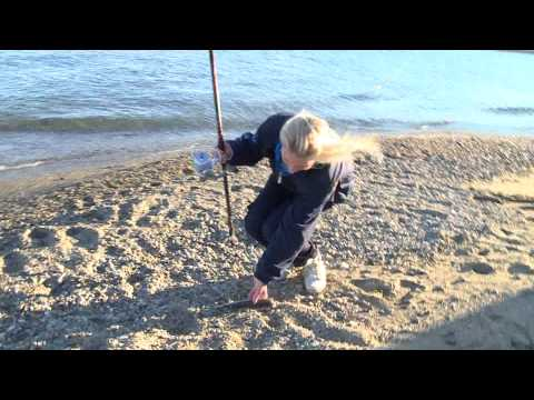 Italian Fishing TV - Colmic - Beach Ledgering