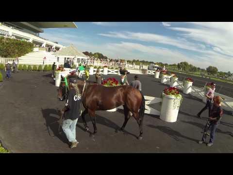 Arlington International Racecourse. Chicago, Sep. 28 , 2014
