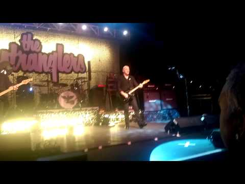 Always The Sun - The Stranglers at Cliffs Pavilion, Southend-on-Sea, England .Friday 13th March 2015