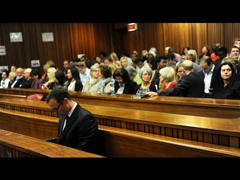 Pistorius shot using 'primal instincts', defence says