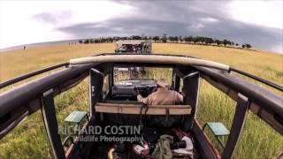 Masai Mara Safari Drive Timelapse