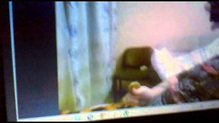 Ебгрица тельнята в попу мне котята